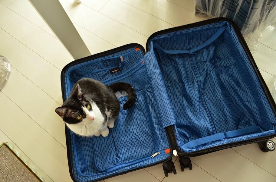 リカルド スーツケース