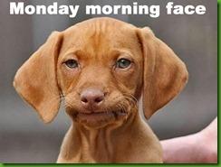 monday-morning-meme-2