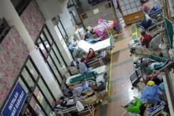 Pandemi : PANIK gegara PIKNIK