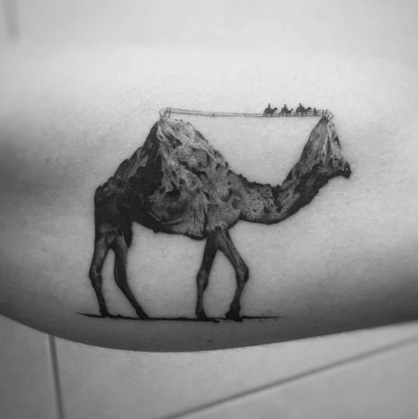 este_montanhosa_camelo