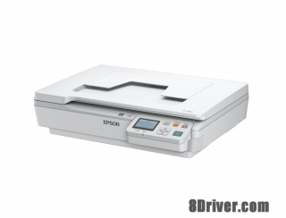 download Epson WorkForce DS-5500N printer's driver
