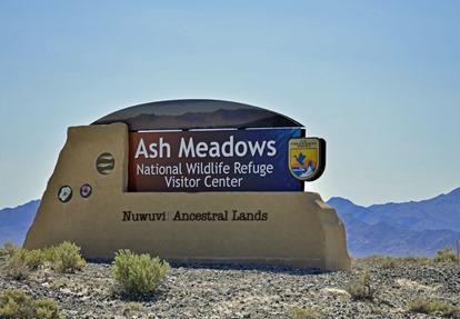 Ash Meadows NWR3