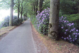 Marche Kennedy (80km) de Etten-Leur (NL) :11-12 mai 2012 DSC03038