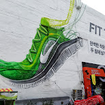 fit to fly in Seoul, Seoul Special City, South Korea
