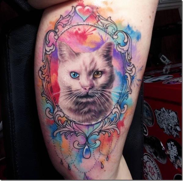Esta odd-eyed gato