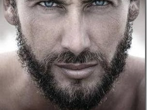 Review: Hawke (Cold Fury #5) by Sawyer Bennett