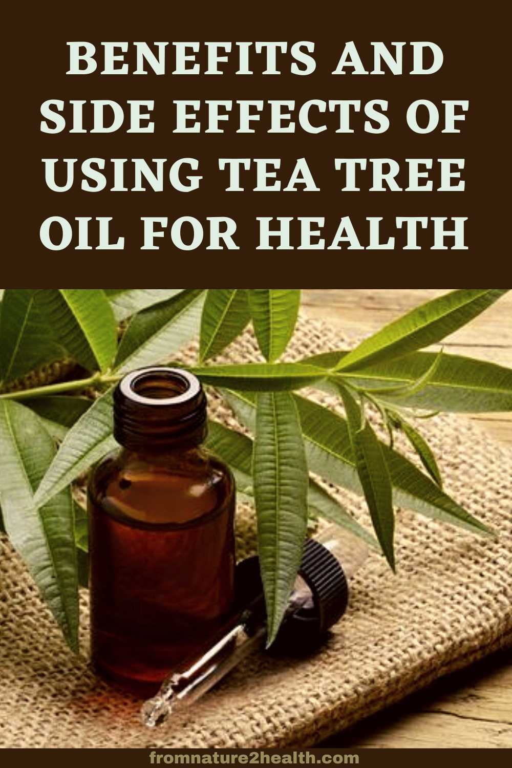 Benefits and Side Effects of Using Tea Tree Oil for Health