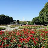 Vigelandsparken (beeldenpark) in Oslo