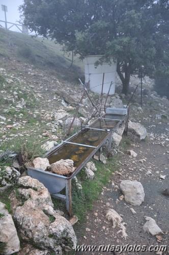 Aljibe del Cerro Coro2