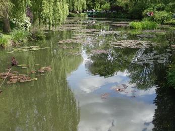2017.05.15-024 l'étang des nymphéas
