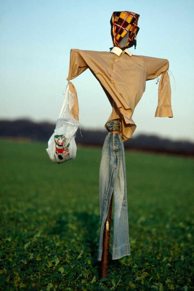 colin-garratt-scarecrows-11