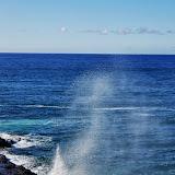 06-27-13 Spouting Horn & Kauai South Shore - IMGP9755.JPG