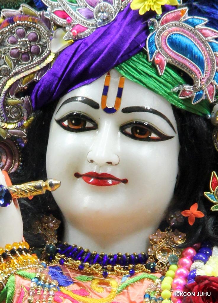 ISKCON Juhu Sringar Deity Drashan on 17th Jan 2017 (42)
