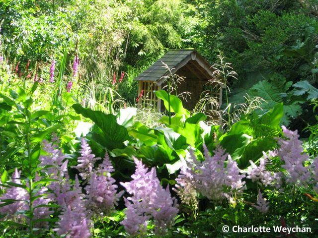 Landscape Gardening Courses Cornwall U2013 Izvipi.com