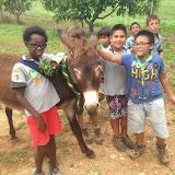 Campaments Estiu Cabanelles 2014 - IMG_0055-SMILE.jpg