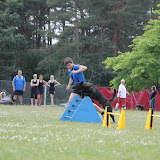 ATM Cup Sporthunde Franken - ATM%2BCup%2BSporthunde%2BFranken%2B385.JPG