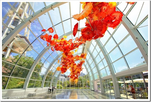150626_Seattle_ChihulyGardenGlass_0024
