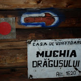 2011-01-26 Muchia Dragusului