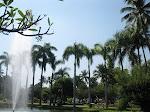 Chiang Mai: parc Buak Had Park