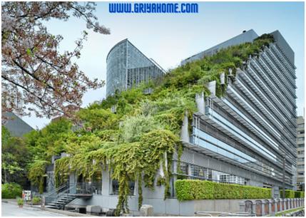 Revolusi Hijau Taman Atap Pada Desain Rumah Anda