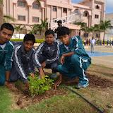 Gurukul Green Revolution (8).jpg