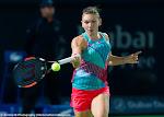 Simona Halep - 2016 Dubai Duty Free Tennis Championships -DSC_5159.jpg