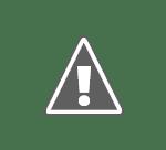 Wild Carpathia Wild Carpathia 2