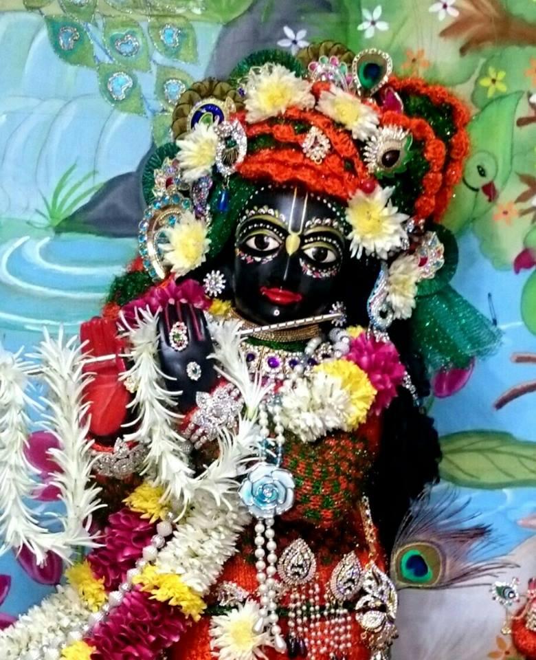 ISKCON Bhusawal Deity Darshan 23 Jan 2016 (9)