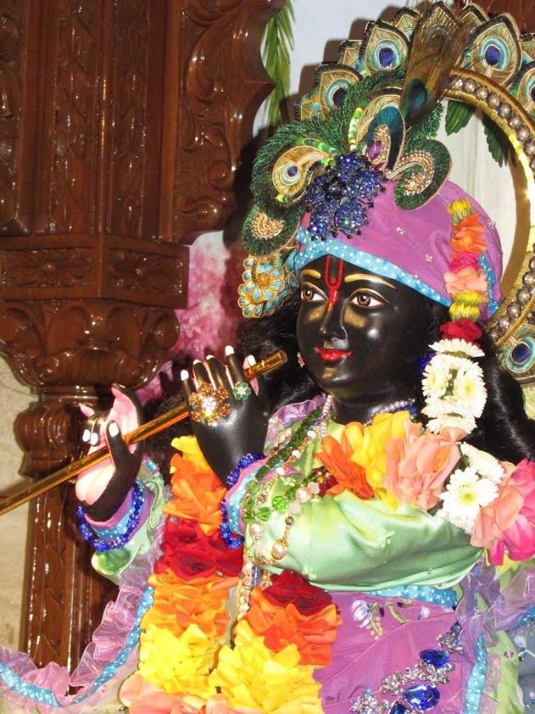 ISKCON New Goloka Deity Darshan 11 Dec 2016 (15)