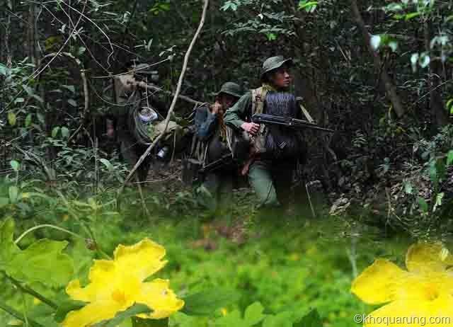 30 bài thuốc gia truyền từ cây khổ qua rừng ít người biết