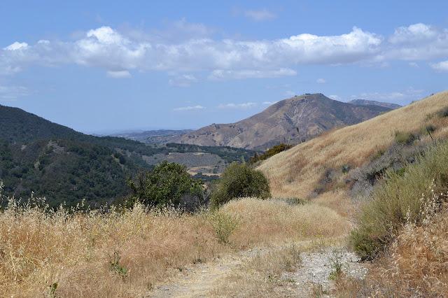 climbing golden grassy road