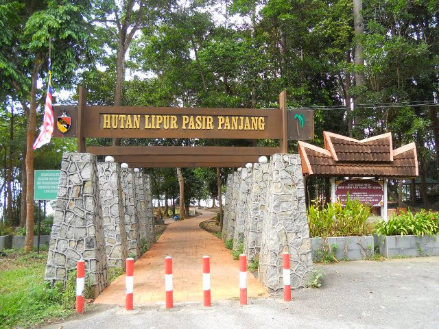 Hutan-Lipur-Pasir-Panjang-Recreational-Forest
