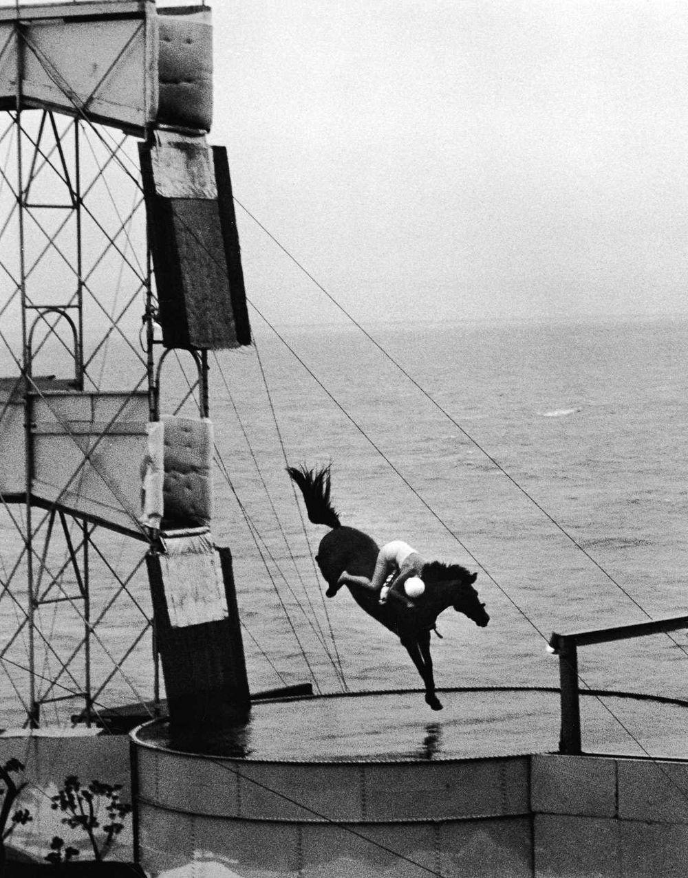 diving-horses-1