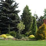 Ogród jak z bajki - zdjęcia autorstwa Sebastiana Zwierzchowskiego