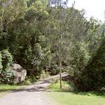 The Basin service trail into the campsite (29738)