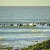 _DSC7350.thumb.jpg