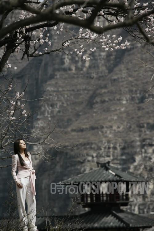 Vicki Zhao Wei China Actor