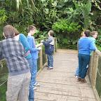 Botanická zahrada 2013 072.jpg