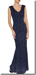 Gina Bacconi Lace V Neck Gown