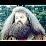 יובל נצח- מורג's profile photo