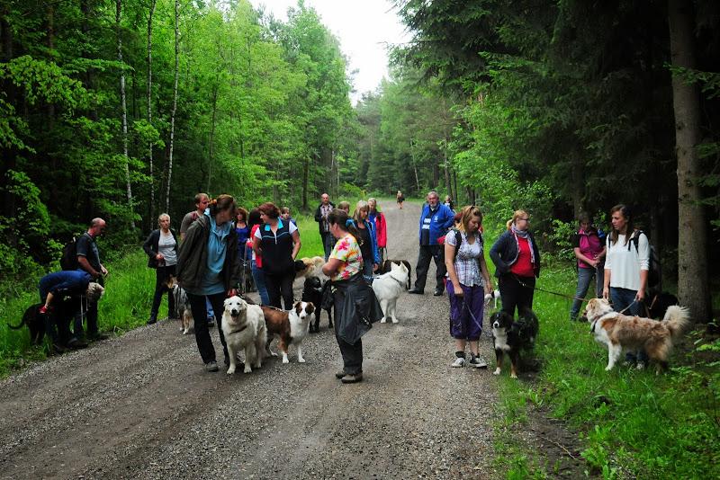 20130623 Erlebnisgruppe in Steinberger See (von Uwe Look) - DSC_3645.JPG