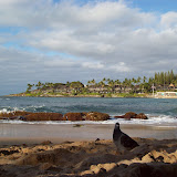 Hawaii Day 7 - 100_7958.JPG