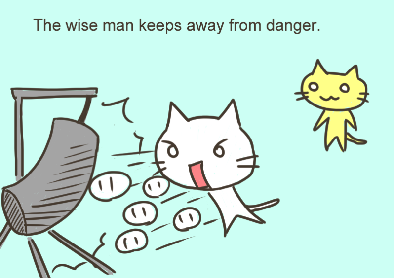 The wise man keeps away from danger