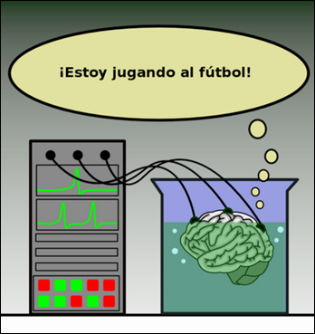 Brain in a vat cérebro numa cuba sonho do futebol