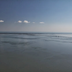 Coastal Sept 27, 2013 070 (6)