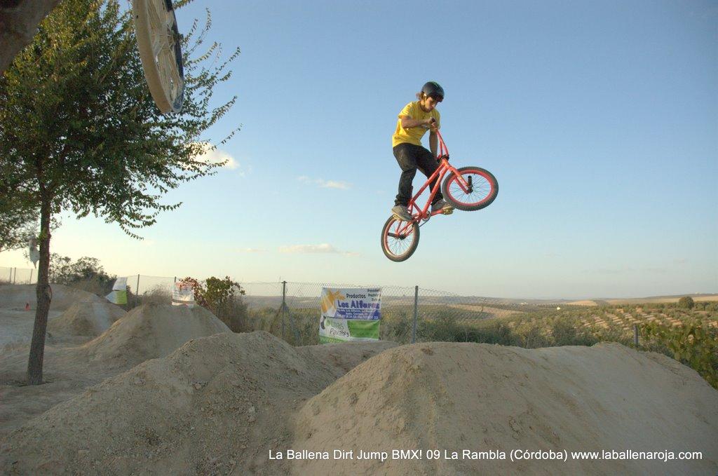 Ballena Dirt Jump BMX 2009 - BMX_09_0124.jpg