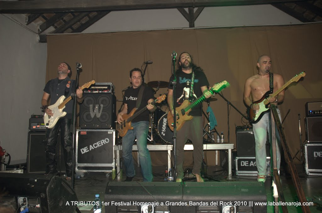 A TRIBUTOS 1er Festival Homenaje a Grandes Bandas del Rock 2010 - DSC_0148.jpg