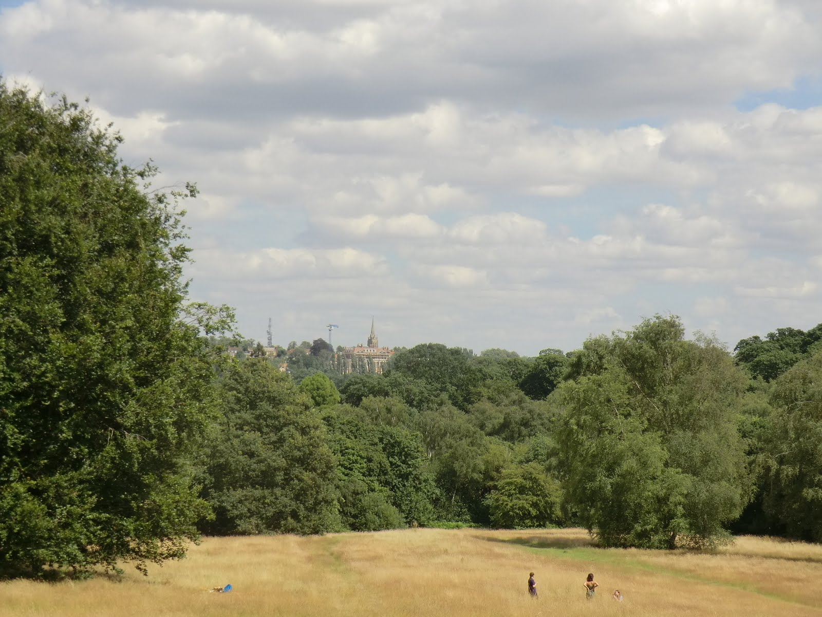 CIMG9135 Hampstead Heath in summer