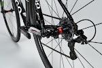 Colnago C59 Italia Campagnolo Record Complete Bike at twohubs.com