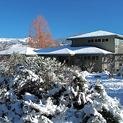 Winter in Paradise 11/27-29